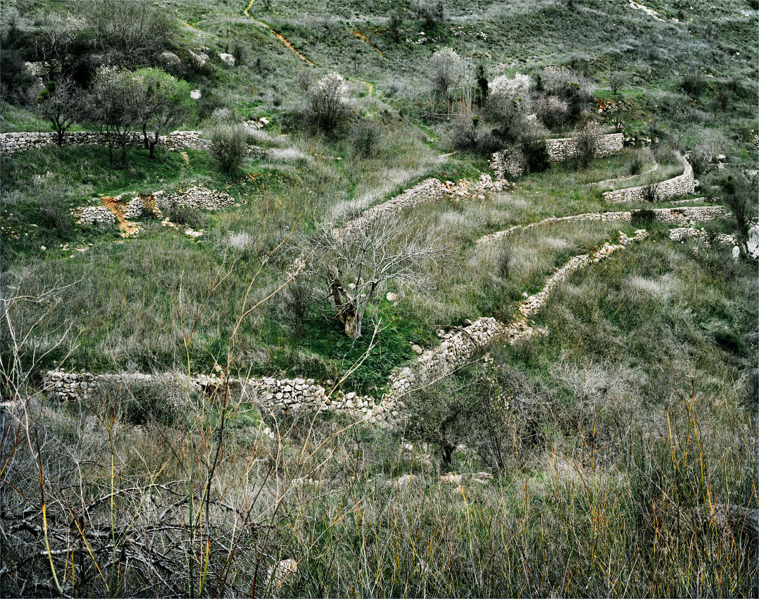 Lifta, district of Jerusalem